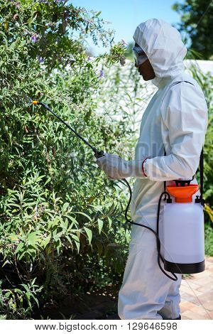 Man doing pest control in the backyard