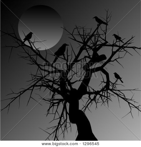 silhouette of a spooky tree with birds in it poster
