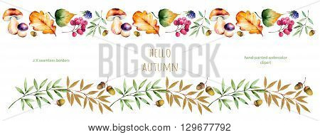 2 Colorful autumn seamless border with autumn leaves, flowers, branch, berries, acorn, mushrooms, blackberries, golden leaves