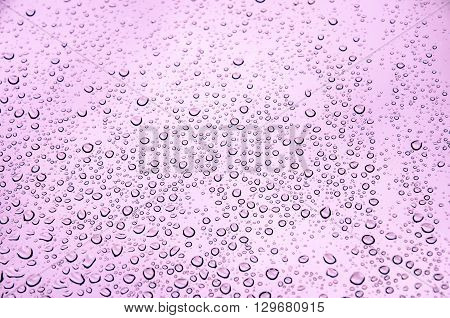 Water texture in pink with small drops