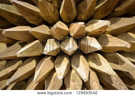 Wooden Fencing Spikes Abstract