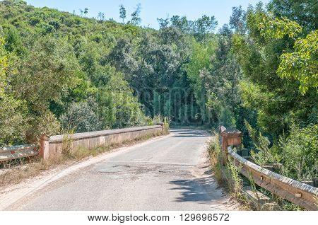 Bridge over the Karatara River in the Karatara Pass on the Seven Passes Road in the Garden Route
