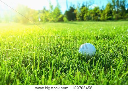 Golf game. Golf balls in green grass.