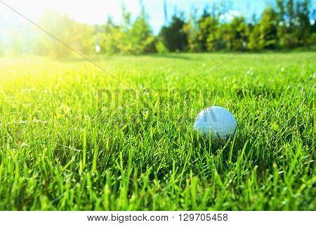 Golf game. Golf balls in green grass.