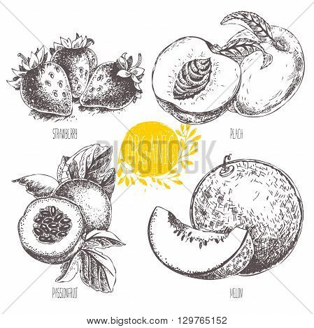 Series - vector fruit, vegetables and spices. Hand-drawn illustration in vintage style. Sketch. Healthy food. Linear graphic. Set of strawberry, melon, peach, passionfruit