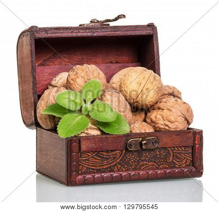 Chest with walnuts isolated on white background.