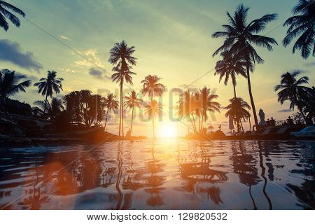 Palm trees reflection in the water on a tropical seaside during amazing sunset.