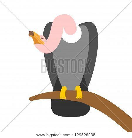 Vulture Scavenger Bird Sitting On Branch. Predatory Bird On White Background. Condor Long-necked