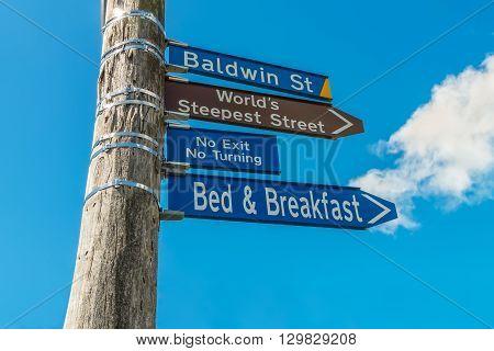 The world's steepest street Baldwin Street in the city of Dunedin in New Zealand