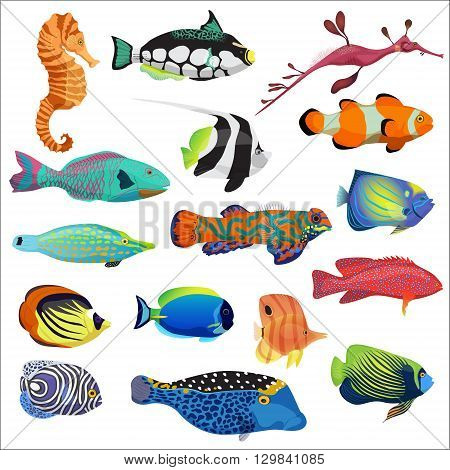 Exotic colorful tropical fish fishes collection set isolated