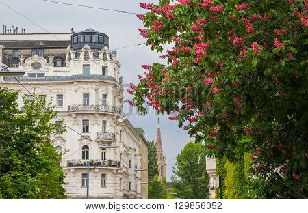 VIENNA AUSTRIA - 10TH MAY 2016: Buildings and Streets in Vienna in the Spring