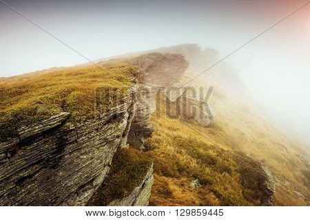 Majestic yellow hills glowing by sunlight a day. Dramatic scene and picturesque picture. Location place Carpathian, Ukraine, Europe. Beauty world. Soft filter, vintage style. Instagram toning effect.