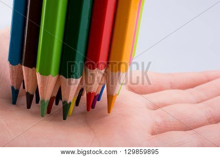 Hand holdin color pencils on a white background
