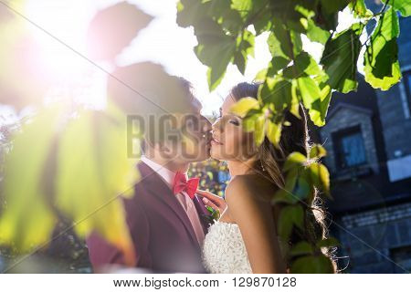the groom kisses the bride in the sun in the garden