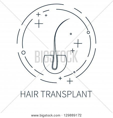 Hair transplant logo template made in line style. Hair loss treatment concept. Hair medical label. Hair follicle icon. Hair bulb vector symbol. Perfect for hair clinics or diagnostic centers.