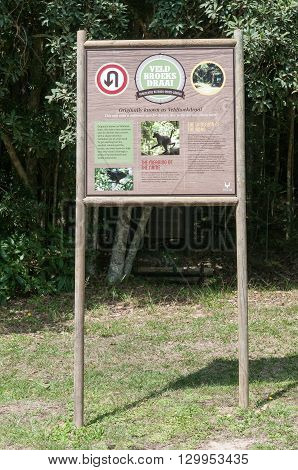 KNYSNA SOUTH AFRICA - MARCH 5 2016: An information board at Veldbroeksdraai a notorious corner on the road between Knysna and Uniondale near Diepwalle in the Knysna Forest