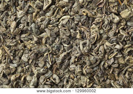 Green gunpowder tea pellets full frame