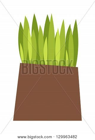 Green grass showing roots. Green grass with earth crosscut. Grass with earth green, nature, background and green nature grass with earth. Ground dirt spring garden texture concept grow agriculture.