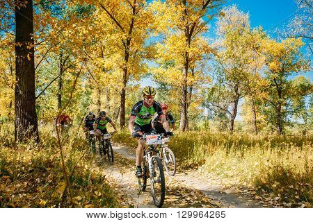 Gomel, Belarus - August 9, 2015: Group Of Young Mountain Bike Cyclist Riding Track At Sunny Day. Mountain Bike Cyclist Riding Track At Sunny Day, Healthy Lifestyle Active Athlete Doing Sport.