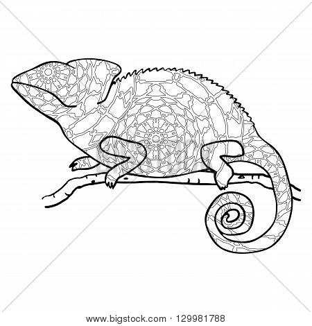 Zentangle style chameleon. Stylized vector animal isolated on white. Freehand reptile with black and white outline pattern