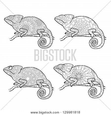 Set of zentangle style chameleons. Zentangle style chameleon. Stylized vector animal isolated on white. Coloring page for adults. Abstract black and white freehand pattern in tribal style