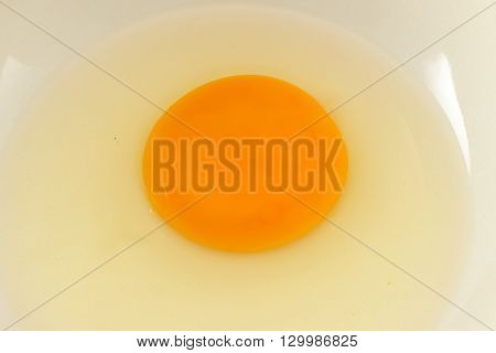 Egg In Bowl