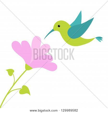 Flying colibri bird and heart flower. Cute cartoon character. Hummingbird. Isolated White background. Baby kids illustration collection. Love greeting card. Flat design. Vector