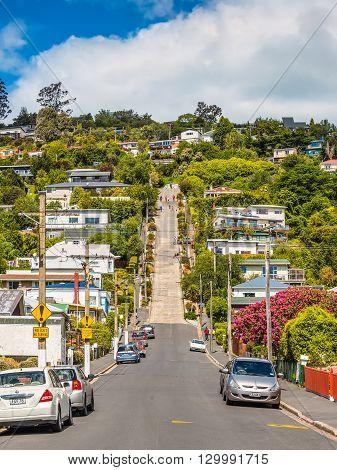 Dunedin New Zealand - November 16 2014: Baldwin Street world's steepest in Dunedin Otago New Zealand. Steepest gradient 1 in 2.86.