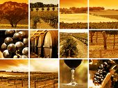 abstract montage of all things wine related poster