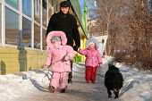 grandfather with child and dog walk on street in winter poster