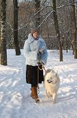 Girl strolling with samoyed dog in winter park poster