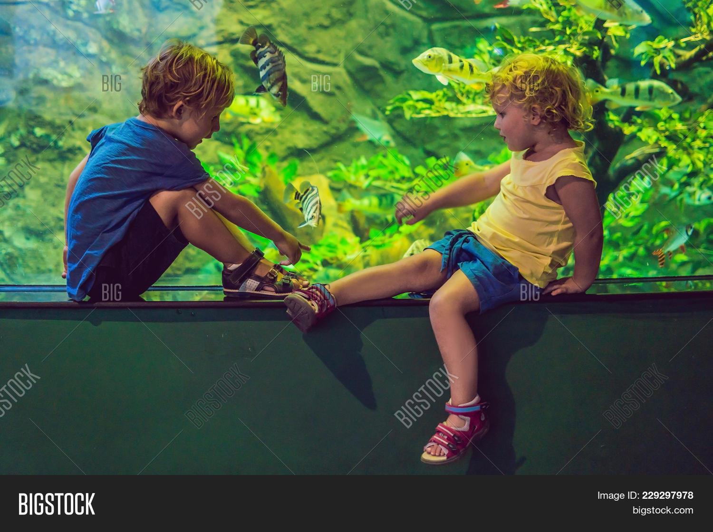 Aquarium kids zoo powerpoint template aquarium kids zoo powerpoint y toneelgroepblik Images