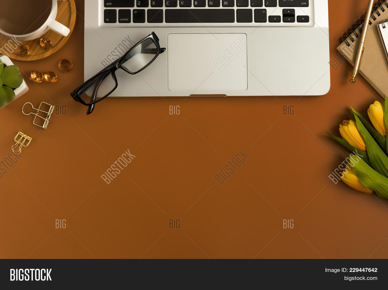 Photography styled stock brown powerpoint template photography y toneelgroepblik Image collections