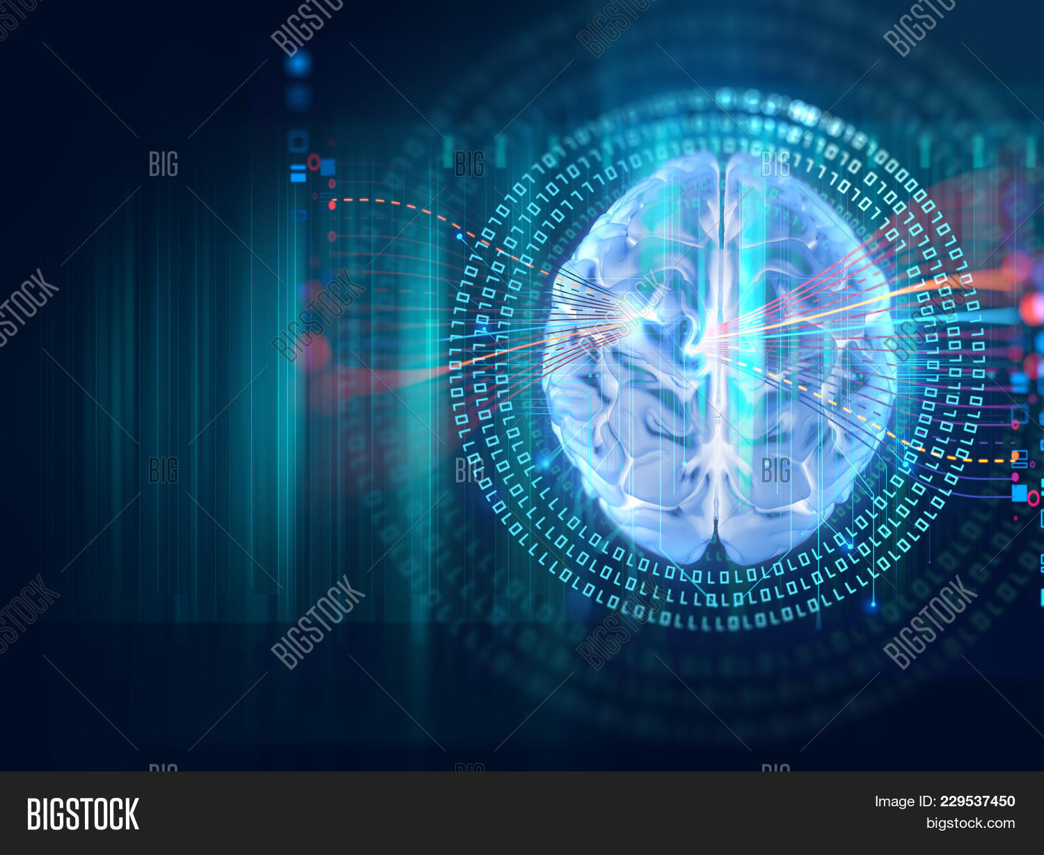 Human Brain Powerpoint Background Powerpoint Template Human Brain