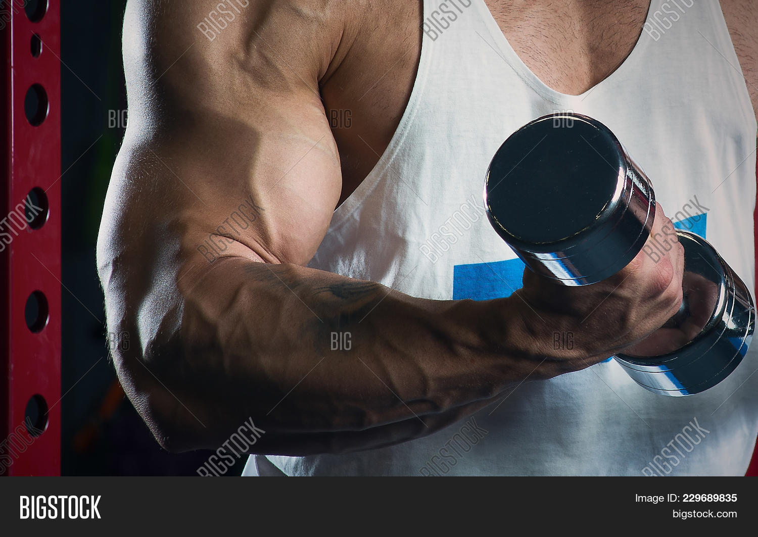Muscular Arms Doing Image Photo Free Trial Bigstock