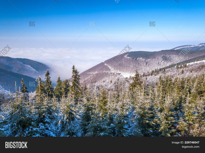 Winter mountain powerpoint template powerpoint template winter your text toneelgroepblik Gallery