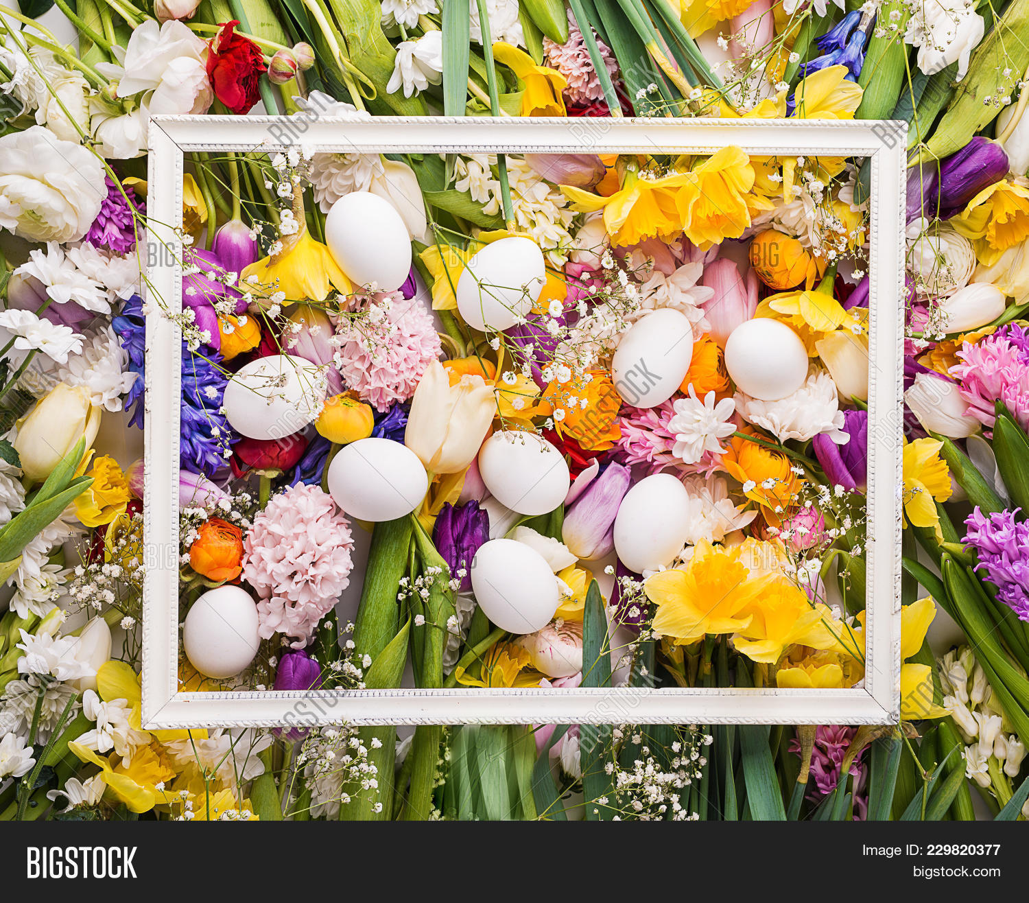 Colorful Flowers Powerpoint Template Powerpoint Template Colorful