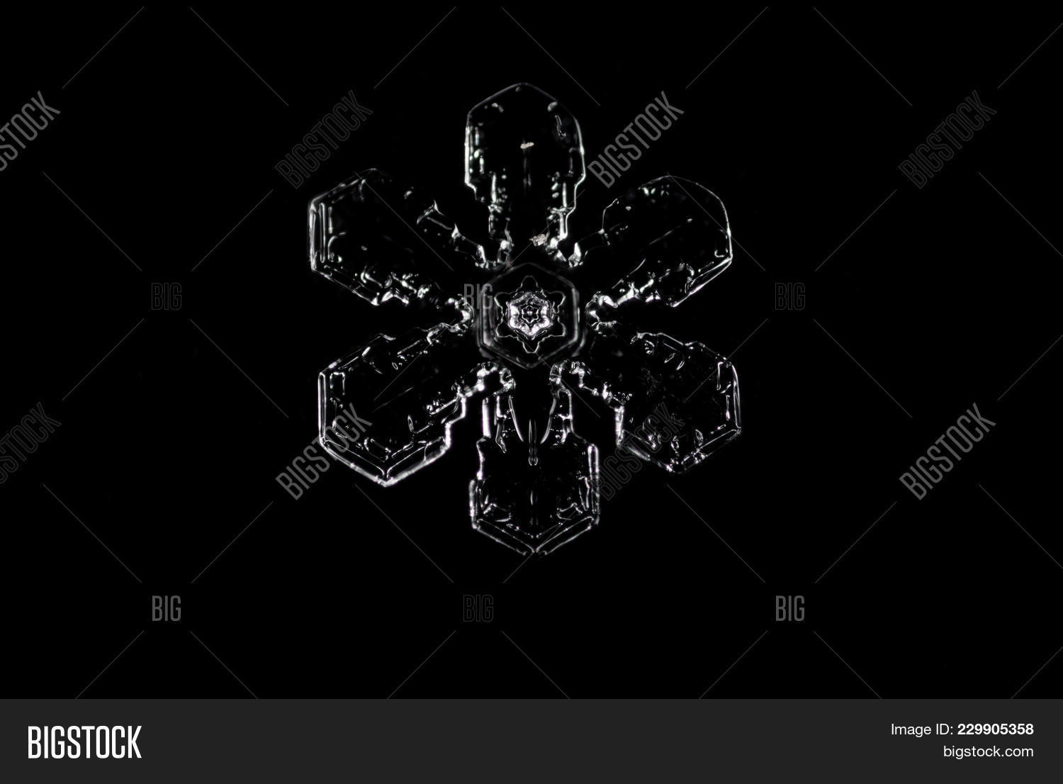 real snowflake powerpoint template real snowflake powerpoint