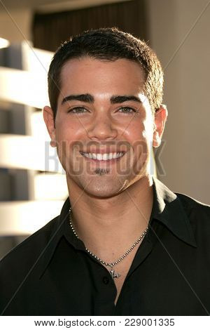 LOS ANGELES - JUL 13:  Jesse Metcalfe at the ABC Summer Press Tour Party 2004  on July 13, 2004 in Century City, CA.