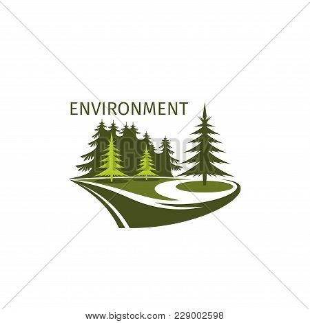 Green Environment And Nature Environment Icon Of Forest Trees Or Urban Parkland For Landscaping Desi
