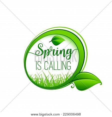 Spring Is Calling Green Leaf Icon For Springtime Wishes Or Seasonal Holiday Greeting Card Design. Ve