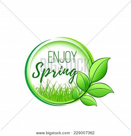 Enjoy Spring Green Leaf Icon Design For Springtime Wishes Or Seasonal Holiday Celebration Greeting C