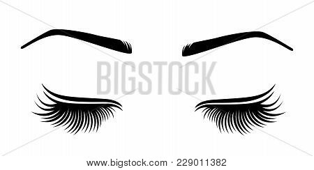 Vector Illustration Of Lashes And Brow. For Beauty Salon, Lash Extensions Maker, Brow Master.