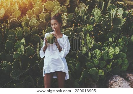 Coquettish Young Cute Brazilian Female In Front Of Quickset Hedge Of Cactuses With Coconut Is Quench