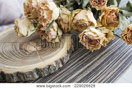 The Cut Wood With Dried Roses; Dry Roses On A Cut Tree. Vintage Decoration