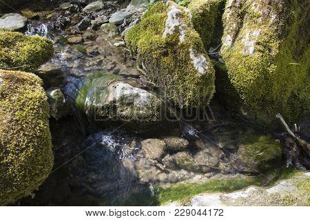 Stream In The Forest During The Day. Stream Flows Through The Rocks.