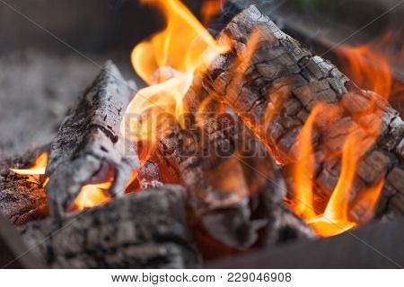 Fire With Charcoals. Burning Wood. Macro. Live Flames With Smoke. Wood With Flame For Barbecue And C