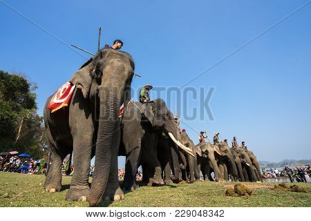 Dak Lak , Vietnam - March 12, 2017 : Elephants Stand In Line Before The Race At Racing Festival By L