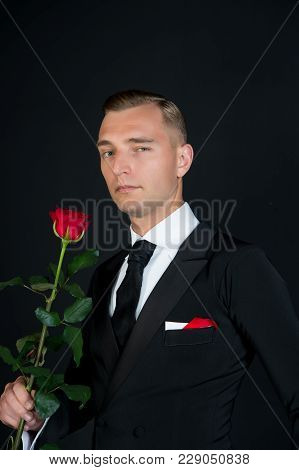 Ballroom Dancer In Suit With Flower. Man With Red Rose On Dark Background. Valentines Day Concept. L