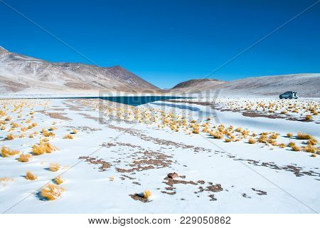 Miniques Lagoon In The Altiplano (high Andean Plateau) At An Altitude Of 4350m, Los Flamencos Nation